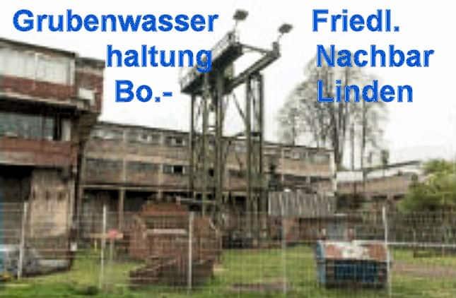 Friedlicher Nachbar - Bochum-Linden -F